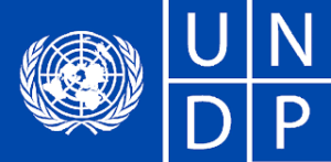 UNDP-1-1-1.png